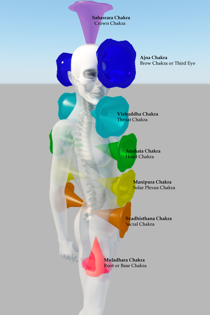 CHAKRAS – Your guide to the energy wheels and creators health