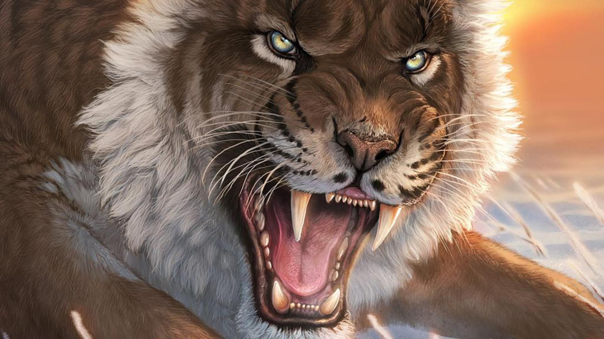 Картинки тигры львы обои
