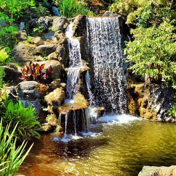 Waterfall And Fish Pond, Los Angeles County Arboretum And Botanic Garden,  Arcadia, California
