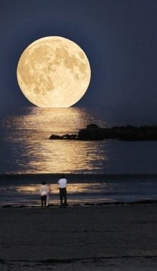 海に刺さる月