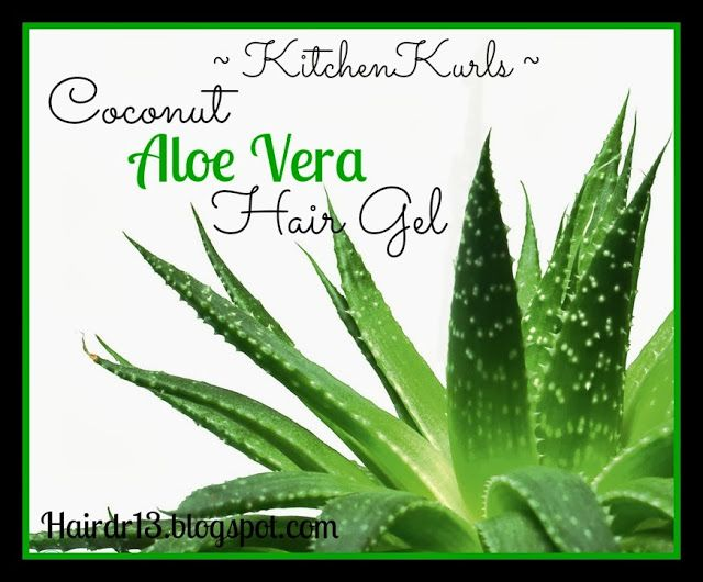 Beauty Benefits Of Coconut Oil Aloe Vera Hair Gel
