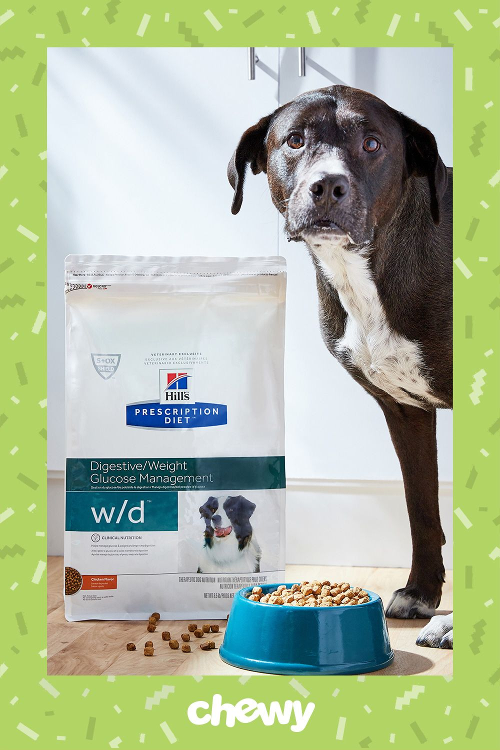 Pin On Pet Weight Management