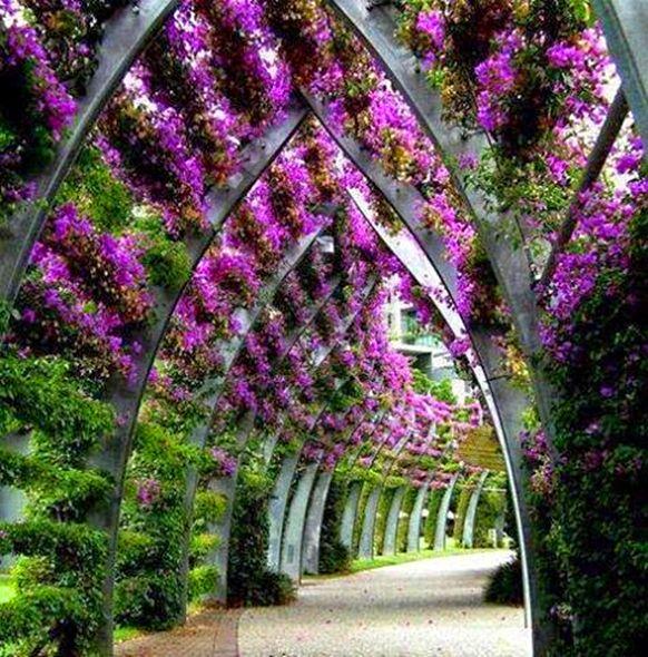 South Bank Parklands Brisbane, Australia