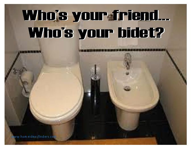 Bathroom Pun Who's Your Friend Who's Your Bidet Fresh Crappy Pun Inspiration Bathroom Puns
