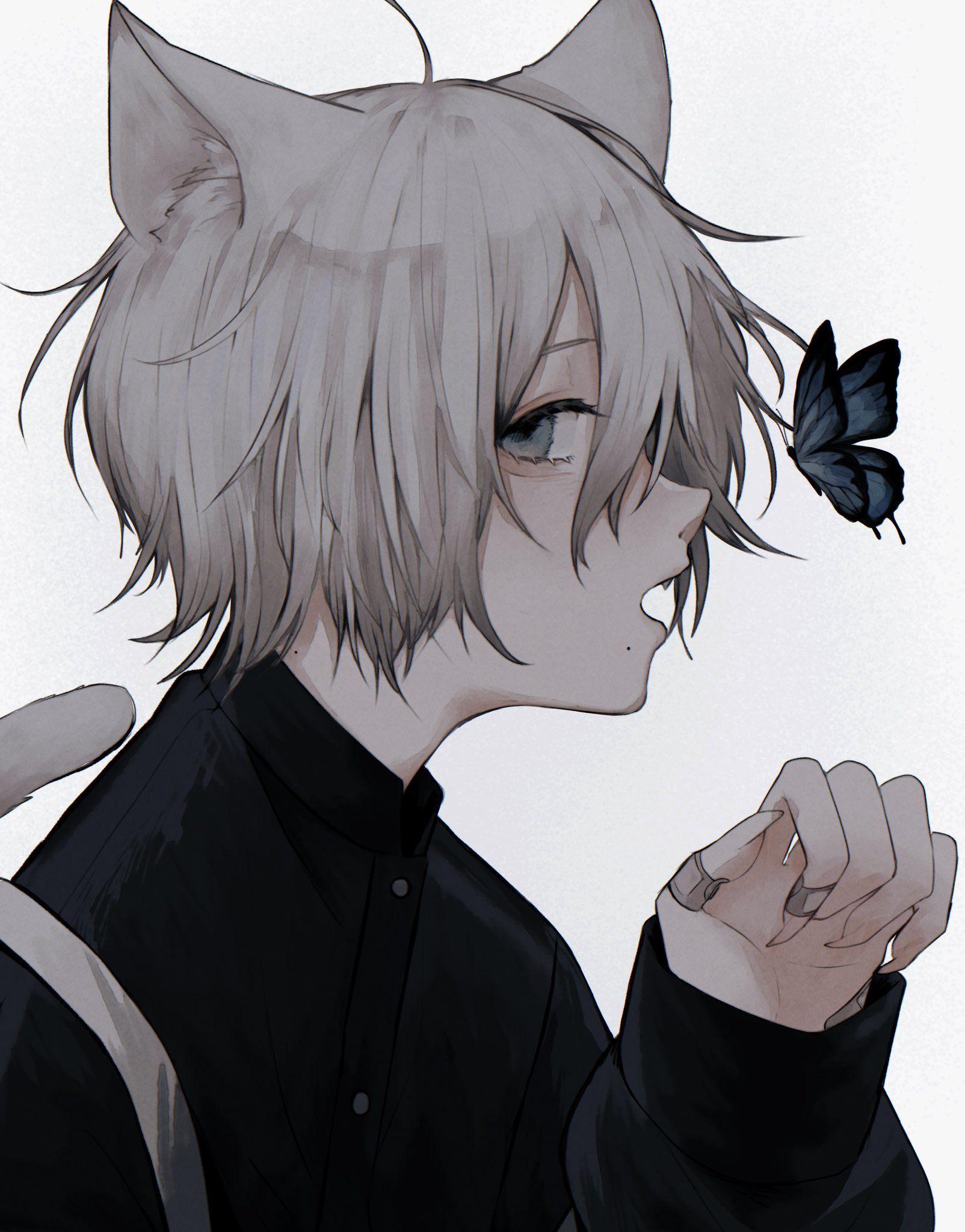 402 On Twitter Anime Neko Anime Chibi Anime Katze