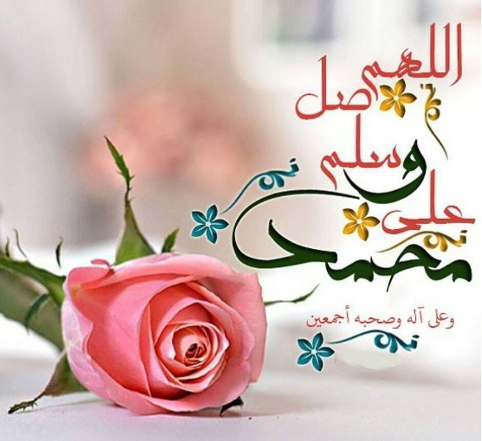 صور ادعية دينية Rose Flowers Plants