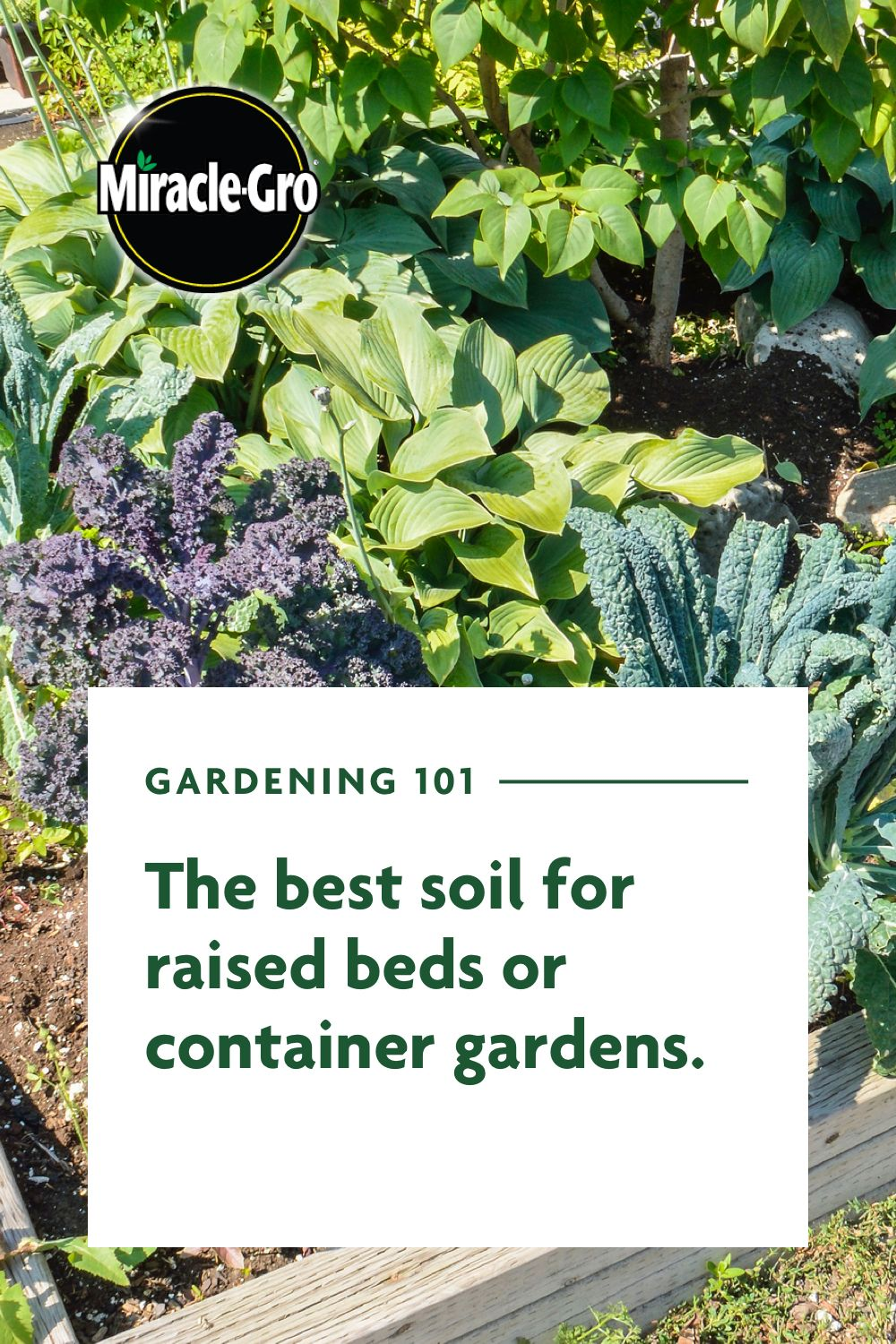 Best Soil to Use in Containers and Raised Beds Container