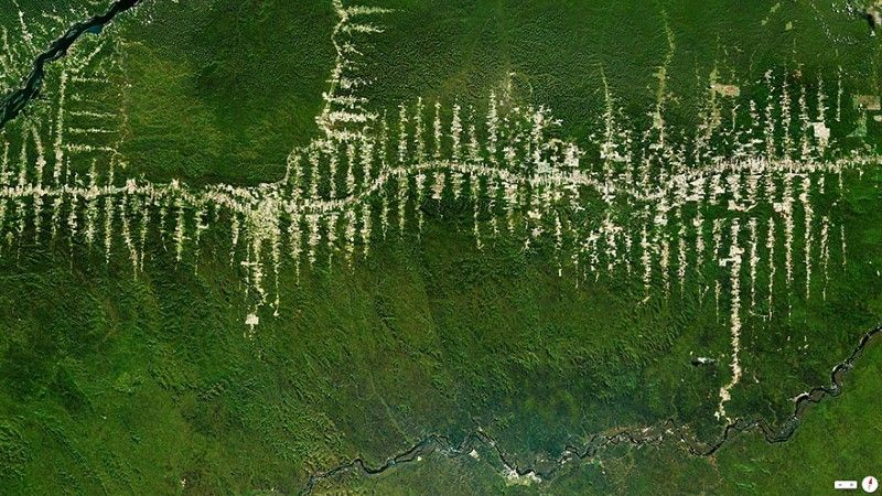 Amazon Rainforest Deforestation Brazil Earth Photos Satellite