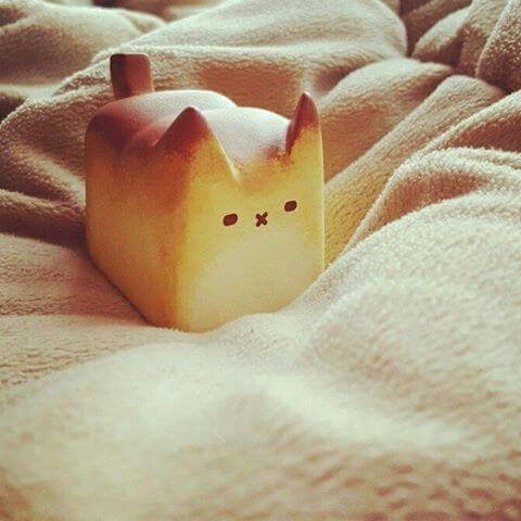 Cat In Bread Box Box Cat Bread Cat Editionrato Kim  Box Cat And Resin
