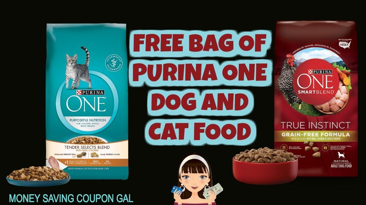 Free Bag Of Purina One Dog And Cat Food Purina Cat Food Free Bag