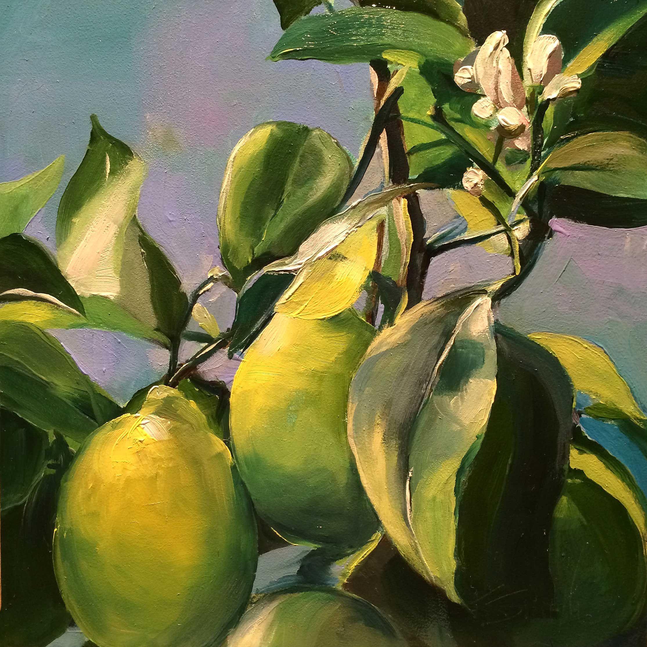 Meyer Lemons Fine Art Original Fine Art Art