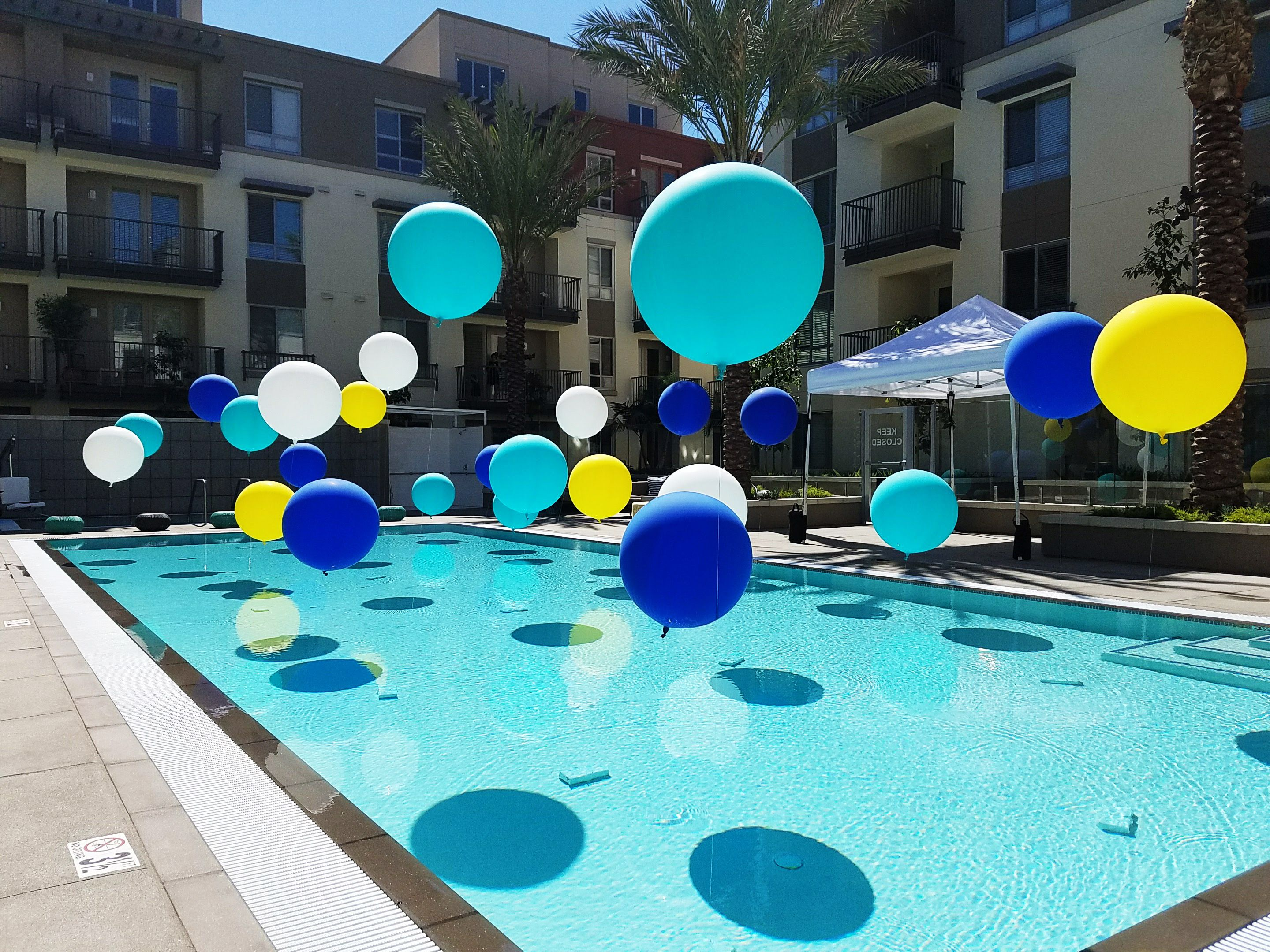 Pool Balloons Summer Party Pool Party Party Ideas Backyard Pool Parties Pool Birthday Party Backyard Party Decorations