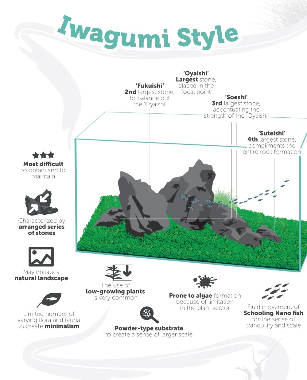 Aquascaping Style - The Complete Guide | Aquascape ...