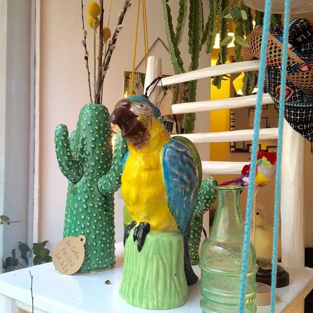 #maisonaimable #shop #deco #design #paris #bastillevillage #perroquet#parrot#cruche#pichet#colors