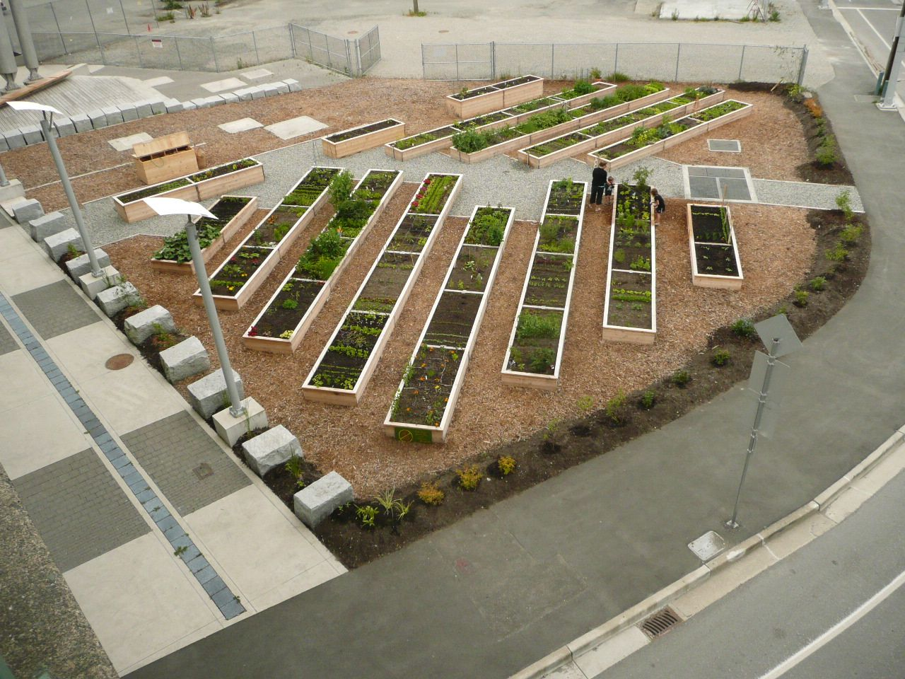 community garden layout - Google Search | Community ...