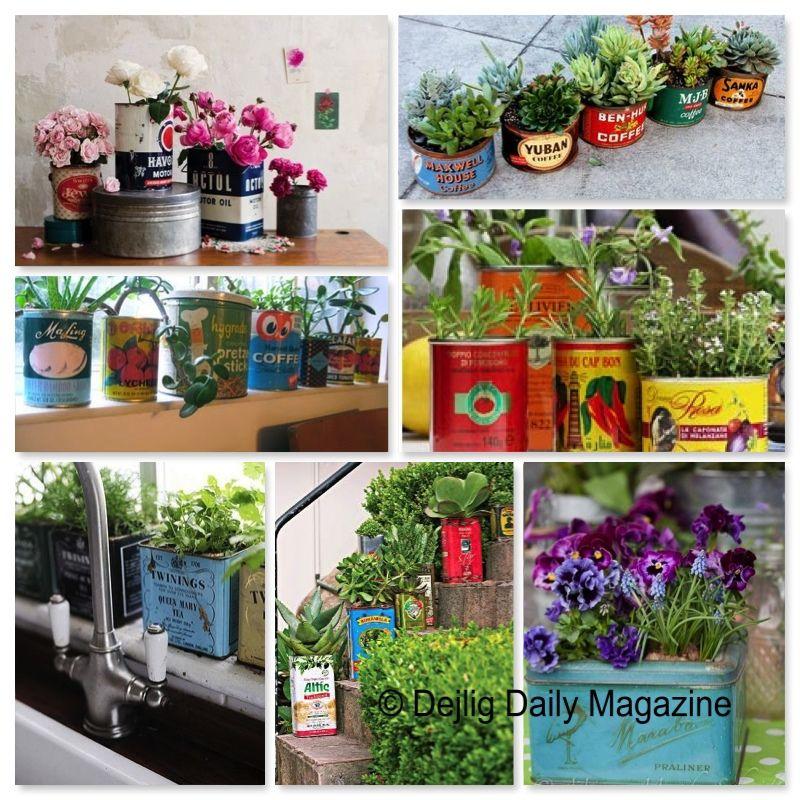 DIY: plantjes in oude blikken