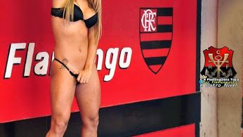 As + gatas são Flamengo - Community - Google+