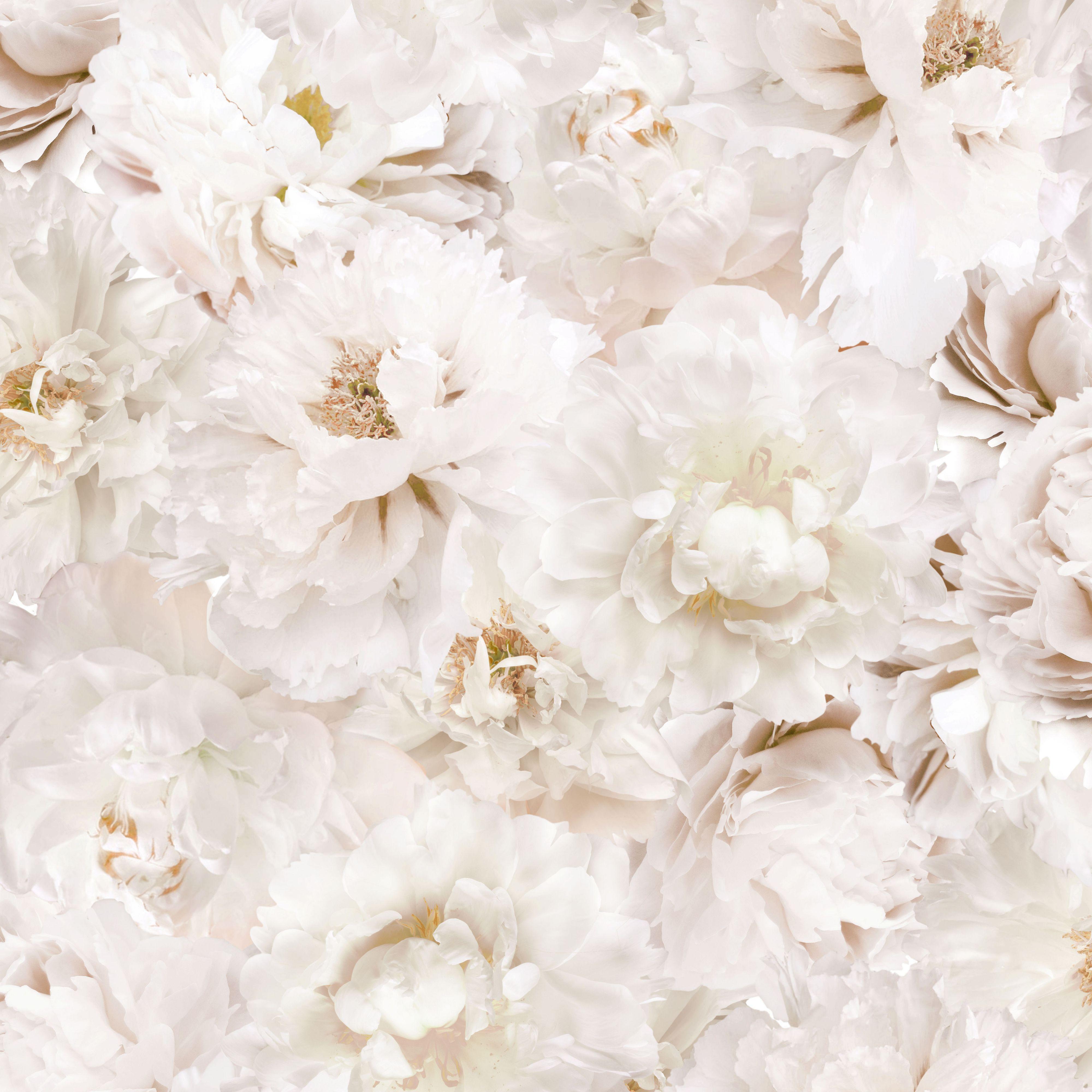 Graham & Brown White Flowers Cream Floral Wallpaper
