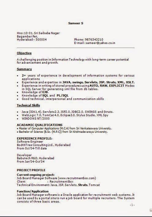 how to write an it resume Sample Template Example ofExcellent CV - it resume samples