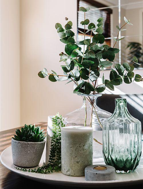 So schön natürlich: Dekotrend Eukalyptus