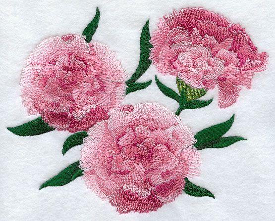 Carnation Design E8399 From Www Emblibrary Com Machine Embroidery Embroidery Library Embroidery Designs