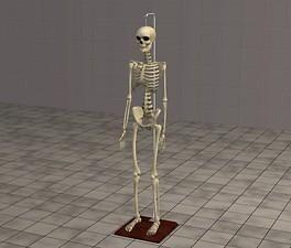Mod The Sims Skeleton Sims Skeleton Novelty Lamp