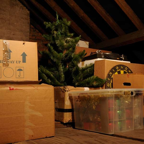 Could You Be Allergic To Christmas Attic Insulation Insulation Attic