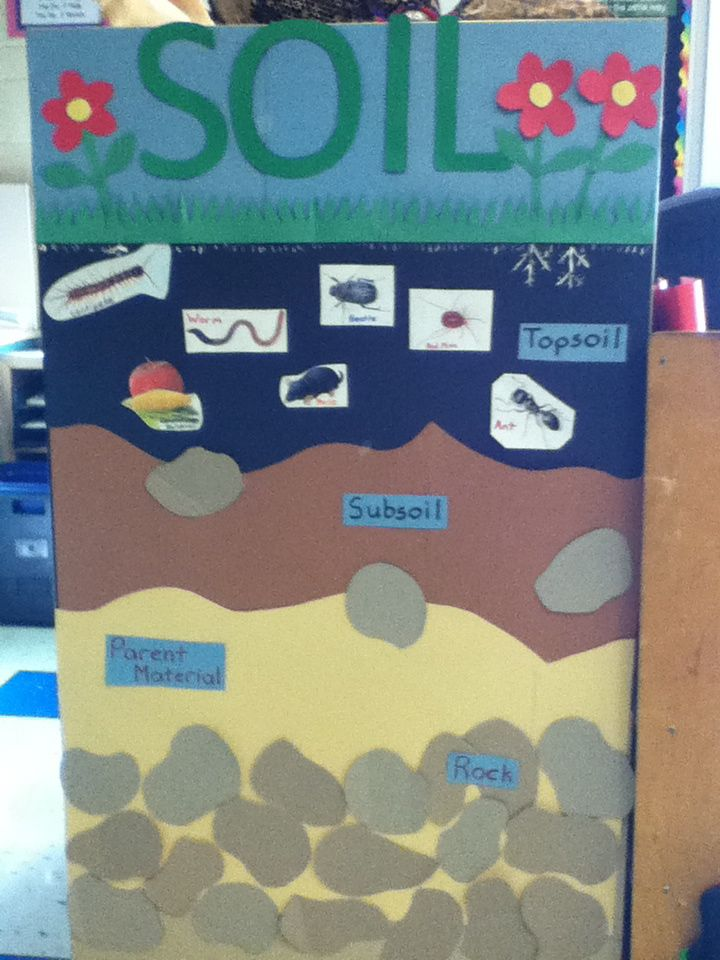 Soil bulletin board used for a grade 3 classroom for Soil 5th grade
