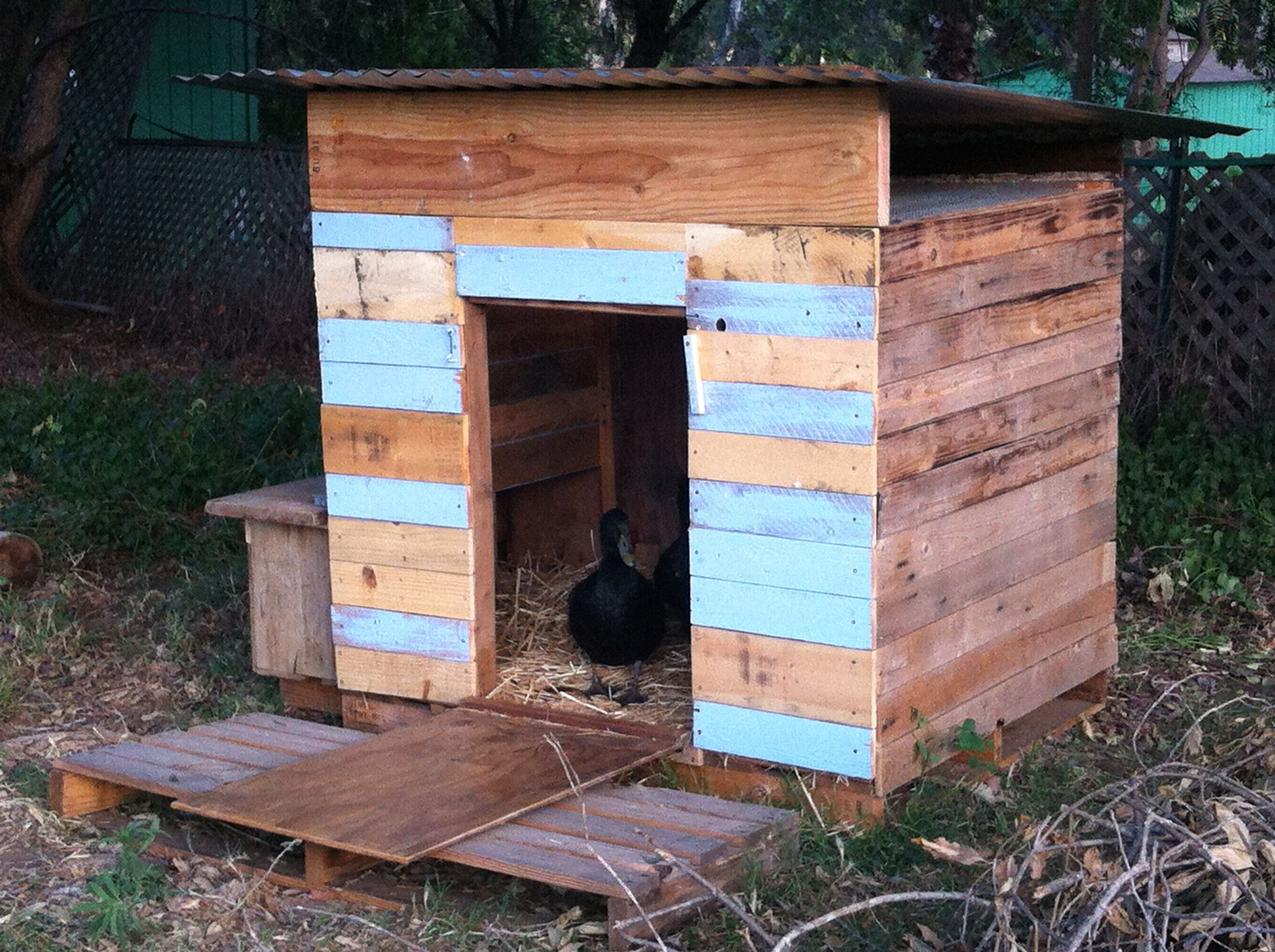 Our Duck House Before Final Paint And Details Happily Made