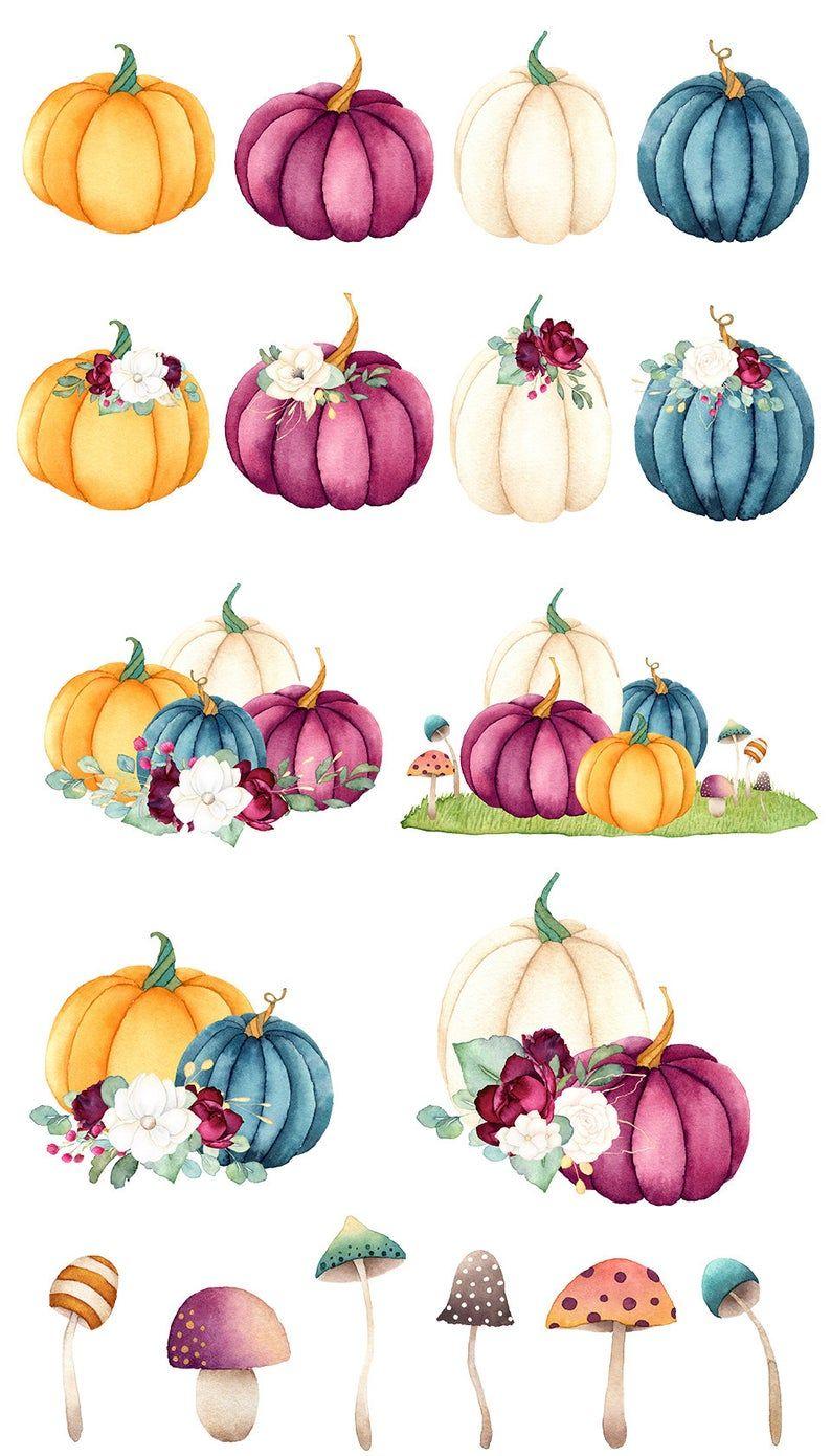 Baby Pumpkin Clipart : pumpkin, clipart, Watercolor, Pumpkin, Clipart,, Floral, Pumpkins,, Burgundy,, Autumn, Invitation,, Thanksgiving, Halloween,, Modern