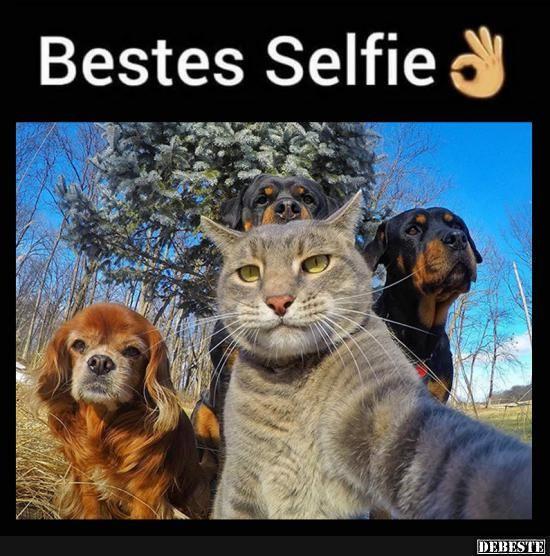 Bestes Selfie.