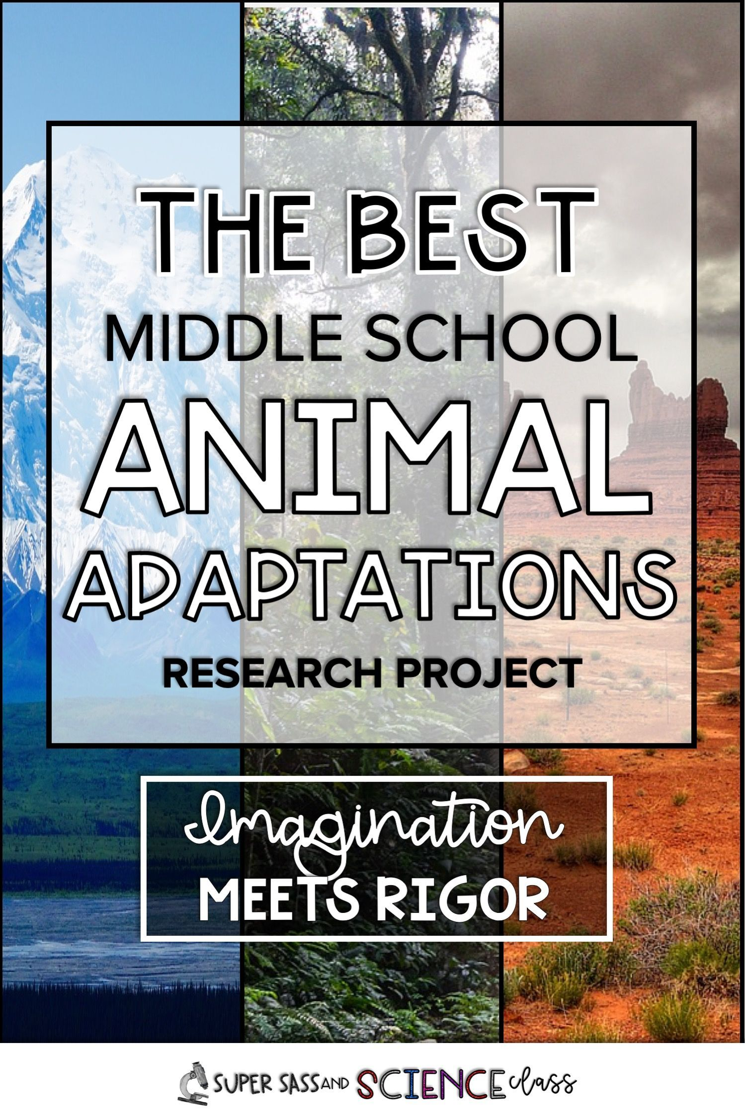 Imagination meets rigor with this awesome middle school animal adaptations project. Students have to create their own animal by researching adaptations and create a model. The have to use evidence from their animals adaptations to prove why it can or cannot survive in a mystery environment. Must have for middle school life science!