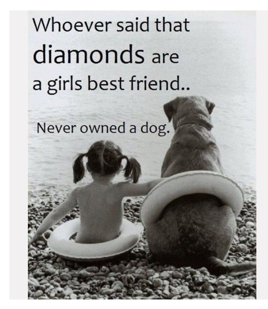 Quotes About A Girl And Her Dog Pincarol J On Josie ^^ And Friends  Pinterest