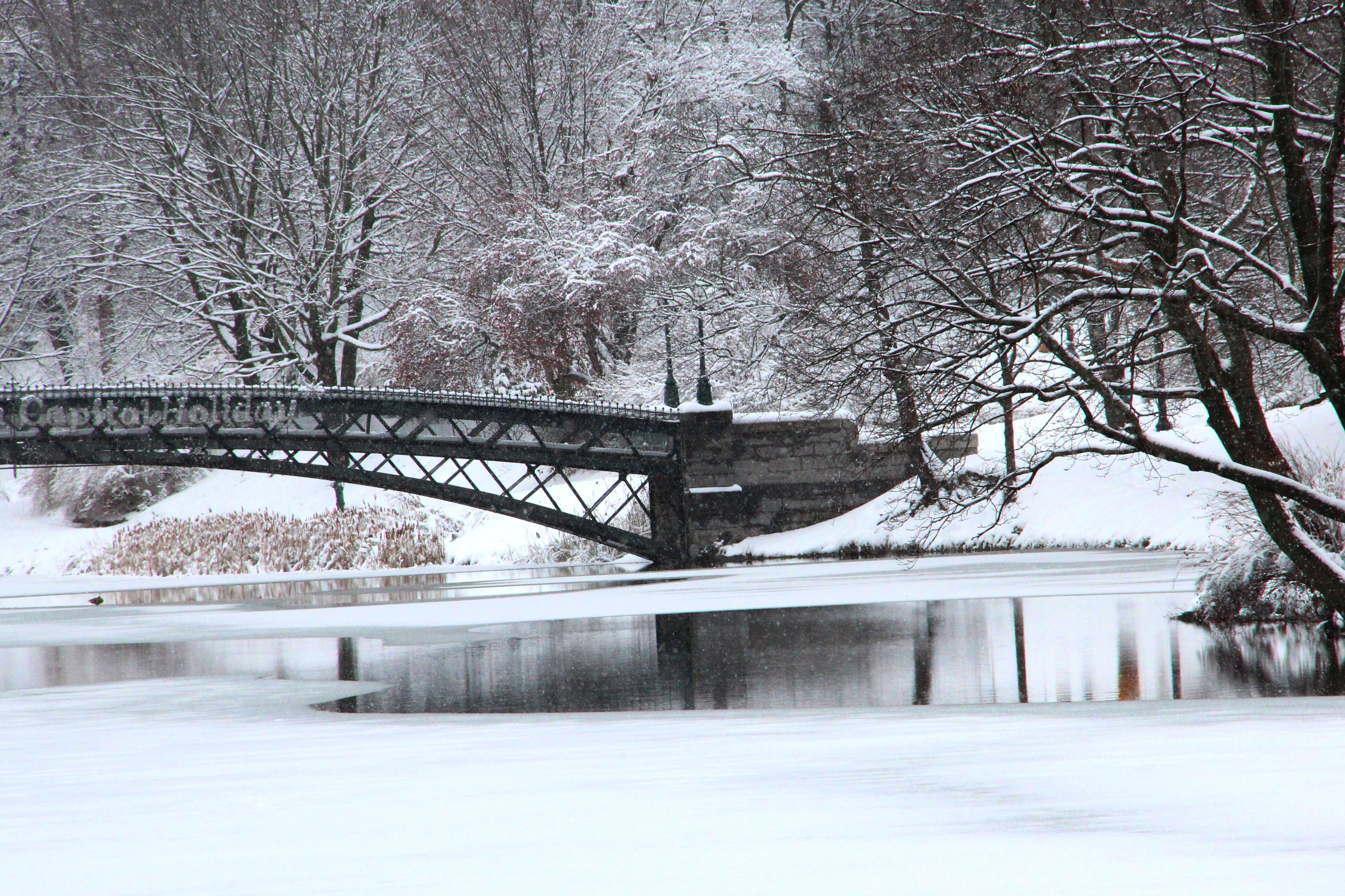 Discover Winter In Albany County On A Getaway To Upstate