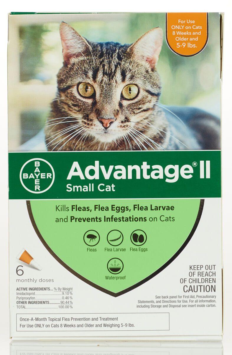 Advantage Ii For Cats 6 Pk Cats 5 9 Lbs Orange Cat Fleas Flea