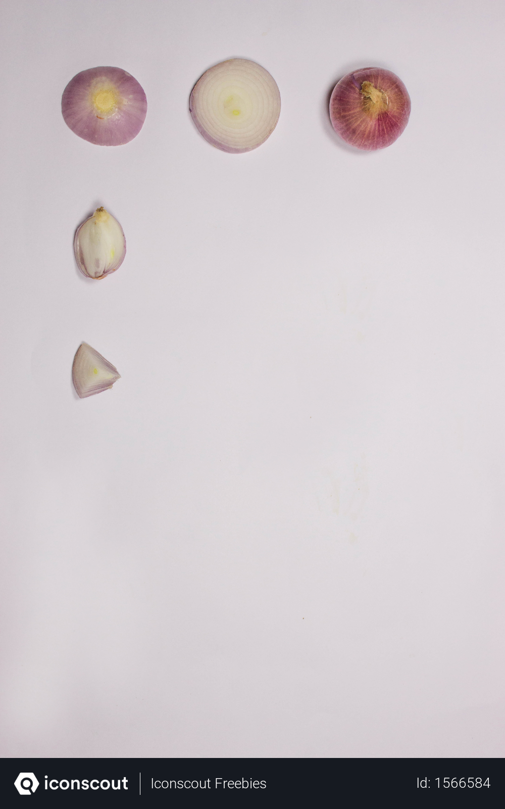 Free Pattern Of Onion And Onion Pieces On Isolated White Background With Space For Text Photo Download In Png Jpg Format Text On Photo White Background Pattern