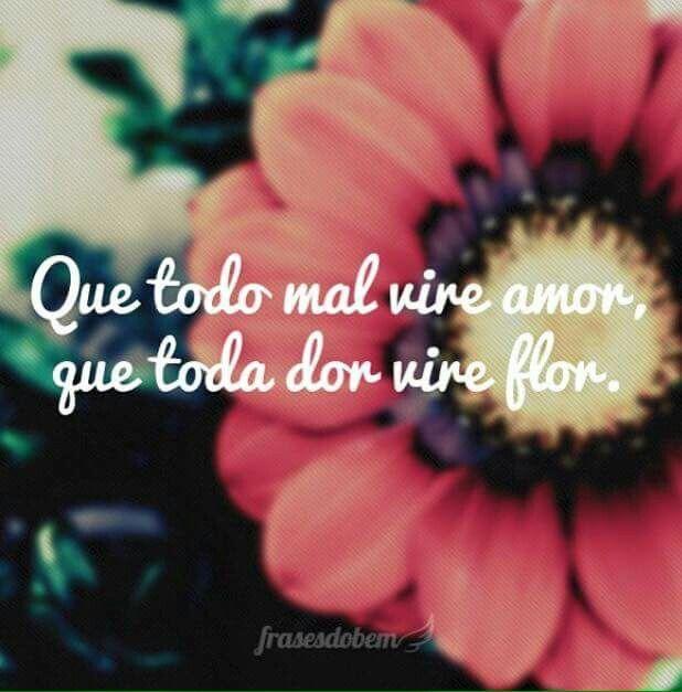 Para vivermos um belo amor... há que sabermos amar uma flor.!...