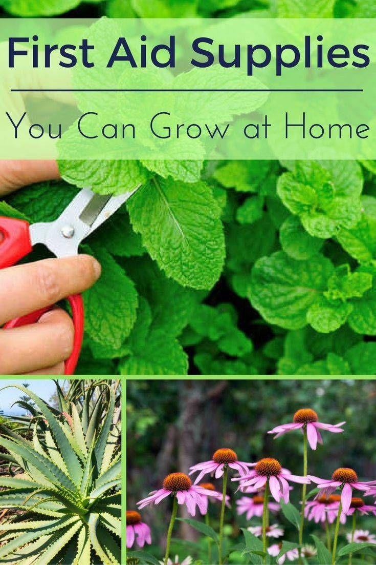 10x10 Grow Room Design: 7+ Wonderful Garden Design 10x10 Ideas