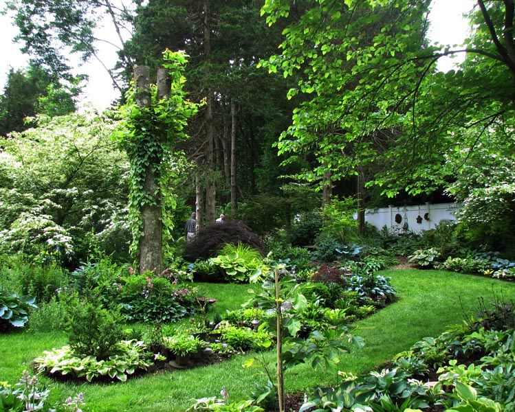 garden tours   Carol Brashear & Bill Meyer's Garden - Woodbury, CT