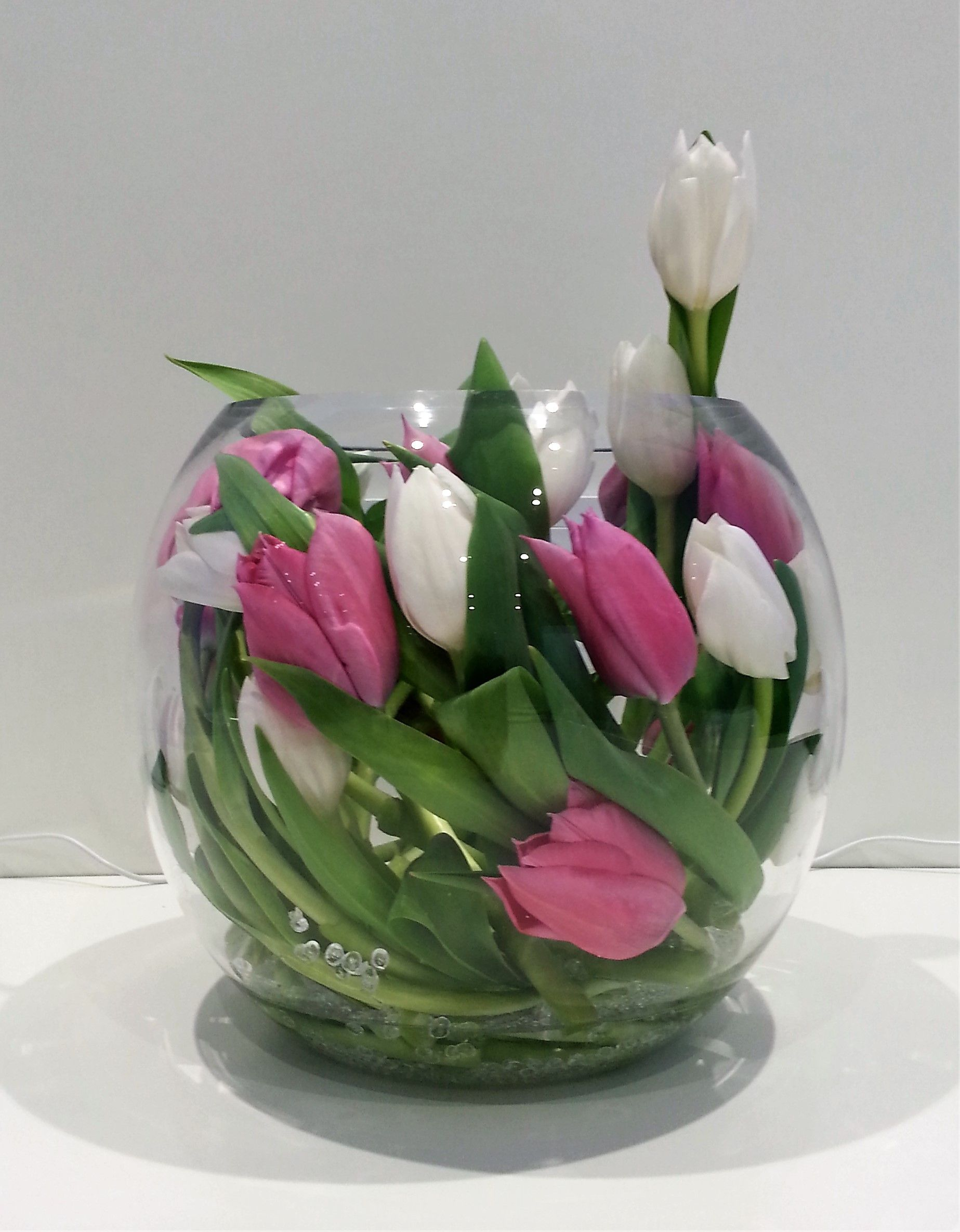 So simple yet so effective a fishbowl vase with bear grass and 16pv white pink tulip encased in gold fish bowl with clear beads reviewsmspy