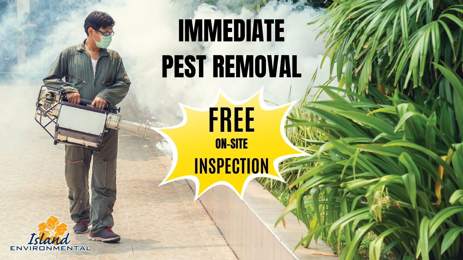 Looking For Pest Control Exterminators Contact Island Environmental Pest Control Our Technicians Are Knowledgeable In The Pest Control Pests Royal Palm Beach