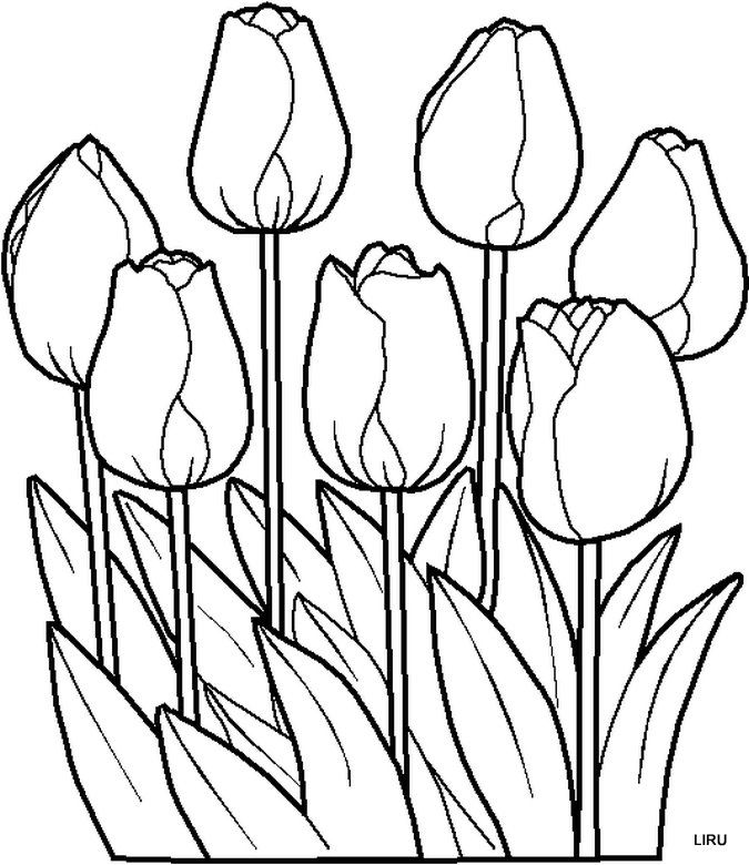 Dibujos Y Plantillas Para Imprimir Dibujos De Flores Para Bordar Dibujos Flores Para Colorear Tulipanes Dibujo Halloween Para Colorear