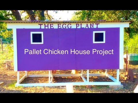 Chicken Coop Designs And Ideas [2nd Edition]