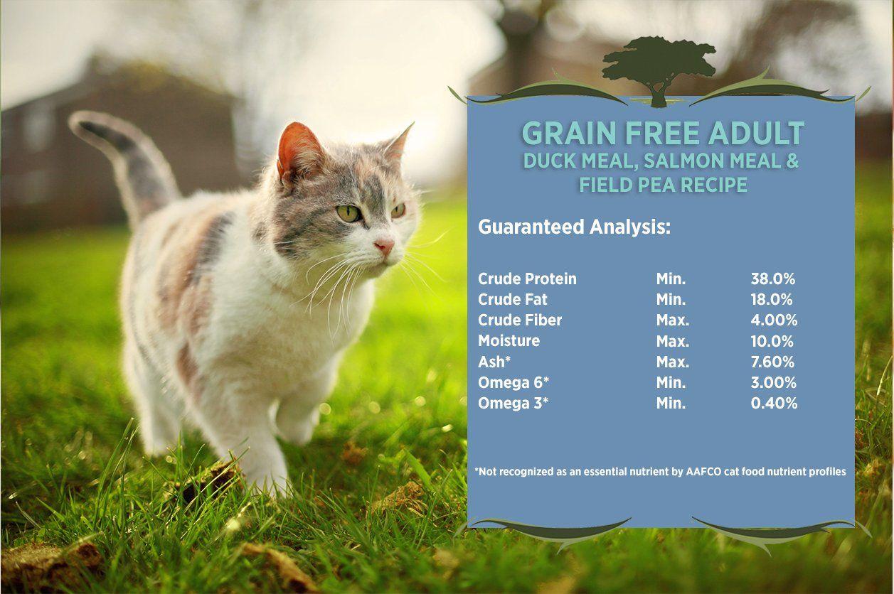 Blackwood special diet cat food grain free duck meal