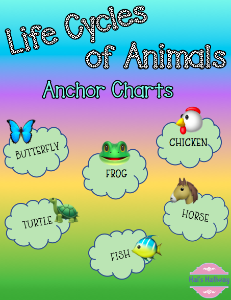 Life Cycles of Animals | Animal categories, Life cycles, Animals