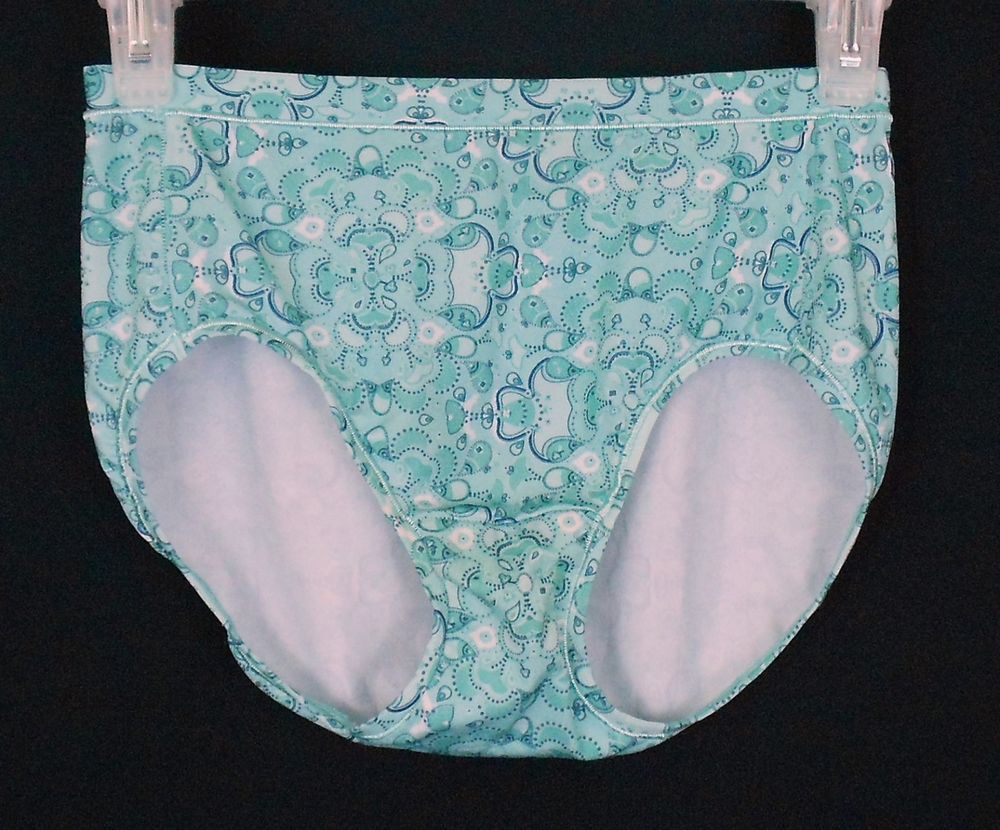 a5d0c9aa6b3e These Hanes 87% Polyester 13% Spandex silky smooth modern brief panties are  tag-free, with a covered elastic waist and leg trim!
