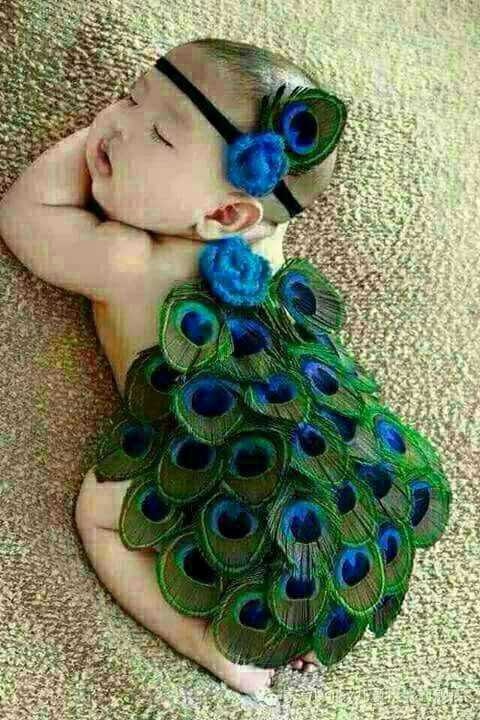 2cb904dd6374 Cute baby in peacock dress......