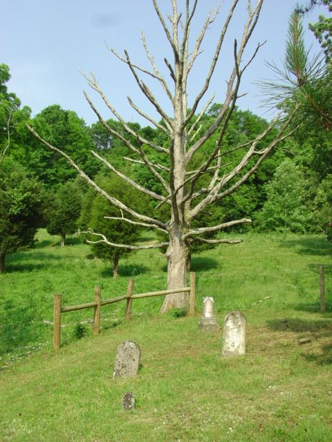 Haunted Esham Cemetery Lewis County Ky Haunted Graveyards Pinterest Kentucky