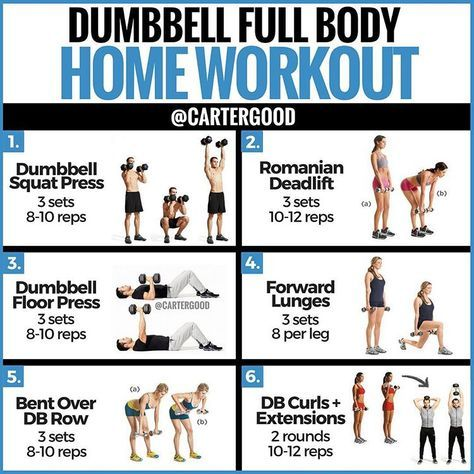 ‼️dumbbell full body workout‼️ — the majority of my posts