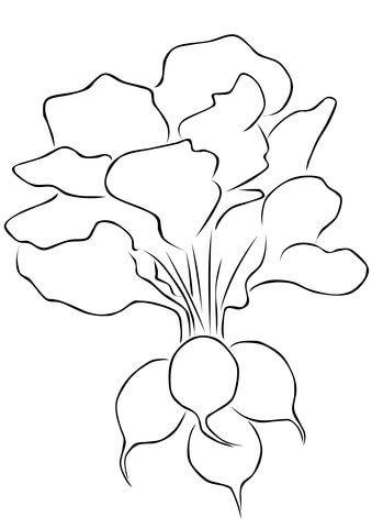 radish coloring page